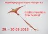 Drachenfest 2018 - Picture